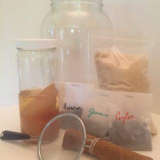 brew your own kombucha kit