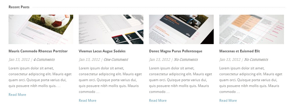 Instructions showing how to filter recents posts on the home page of Theme Trust WordPress Themes