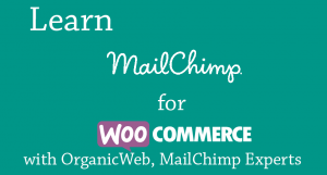 Learn how to boost your WordPress WooCommerce ecommerc store by marketing with MailChimp