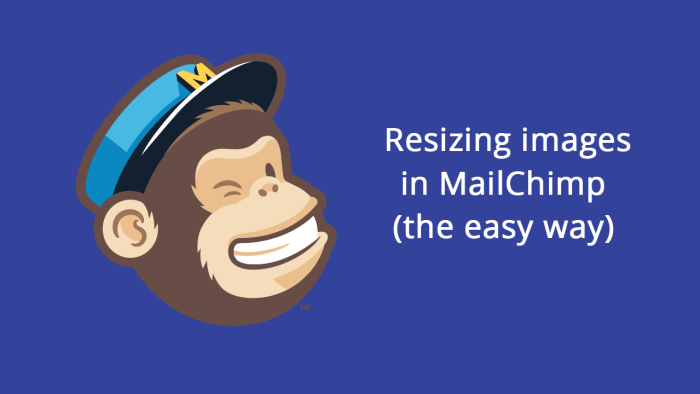 Learn how to add images to MailChimp without first resizing.