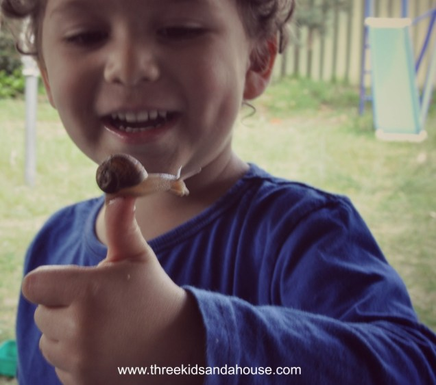 Have fun with your kids by looking for snails in the backyard.