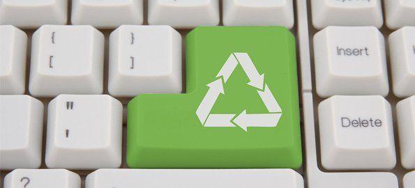ecologia-oficina-verde-organizar