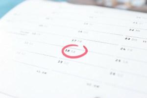 cronograma de actividades estudios actvidad