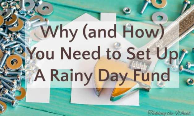 Why (and How) You Need to Set up a Rainy Day Household Fund