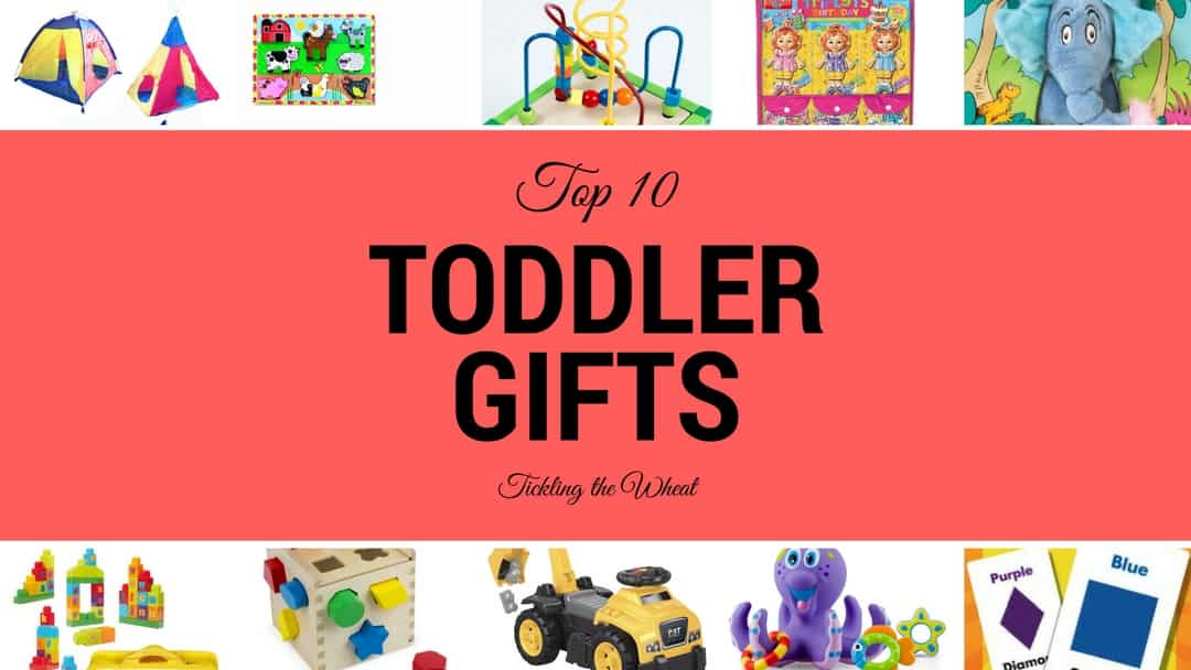 The Perfect Gift List for Toddlers