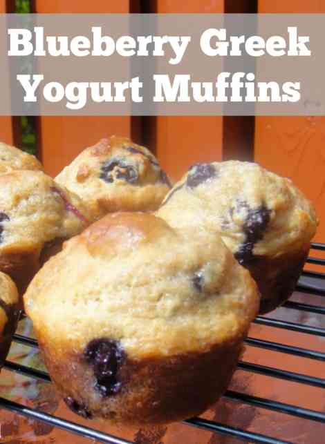 Blueberry muffins made with greek yogurt. Breakfast freezer recipe