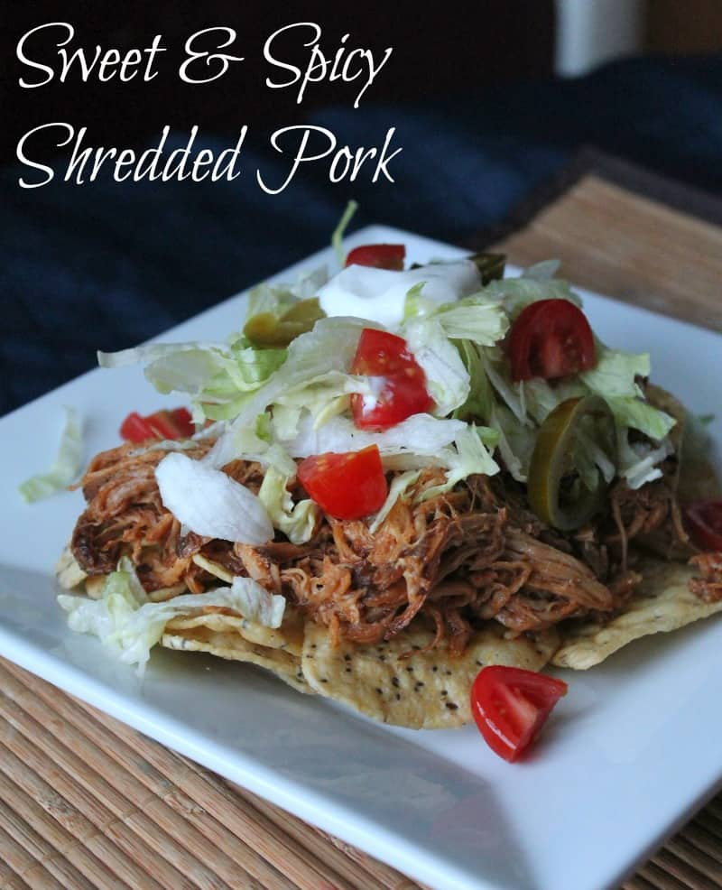 Spicy pork recipes slow cooker