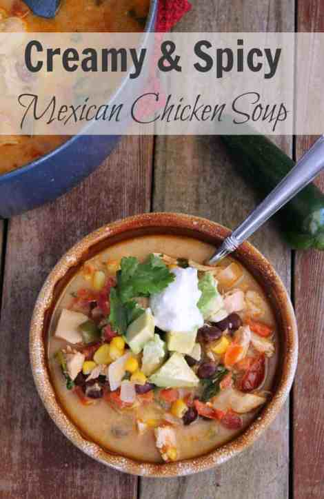 Spicy and Creamy Mexican Chicken Soup 277 Calories and 6 weight watchers points plus