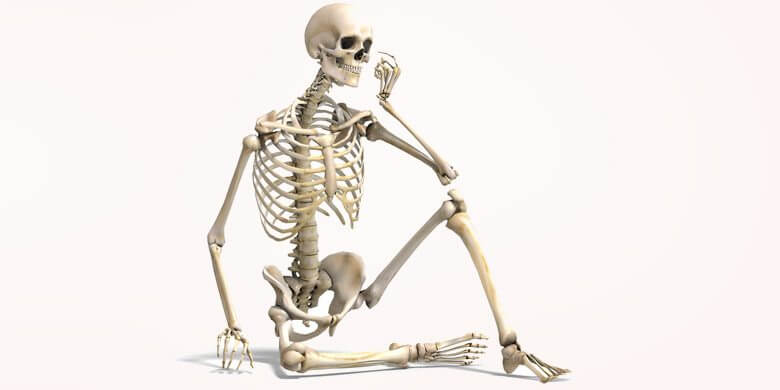 Image result for bones