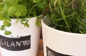 DIY_ Herb pots with chalk labels