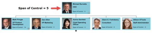 An Executive team structure with a 'narrow' Span of Control