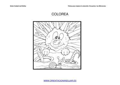 COLOREAMOS DIBUJOS DE ERIZOS IMAGENES_04
