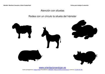 señala la silueta del animal doméstico aprendido imegenes_16