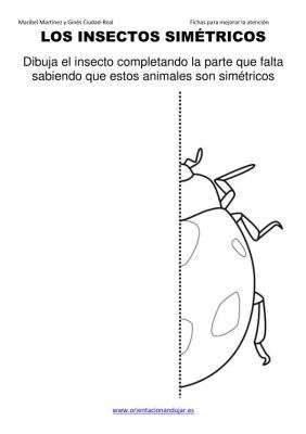 los insectos simetricos trabajamos  lateralidad  izq-dcha ORIENTACION ANDUJAR05 (12)