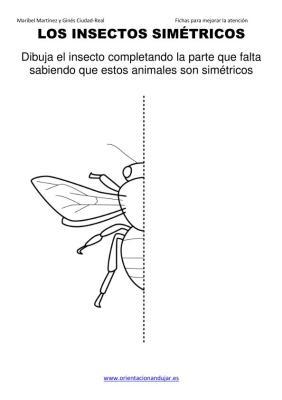 los insectos simetricos trabajamos  lateralidad  izq-dcha ORIENTACION ANDUJAR05 (5)