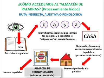 ruta_fonol_gica