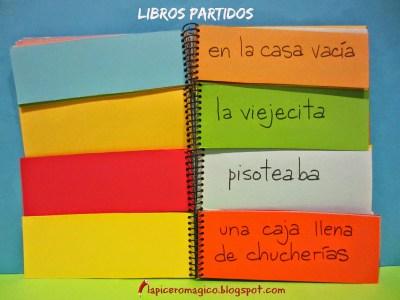 Libros partidos 1b