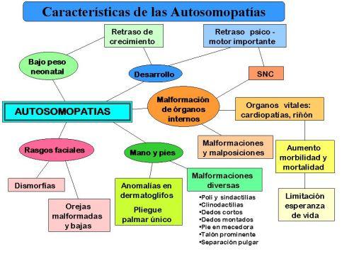 mapa autosomopatias