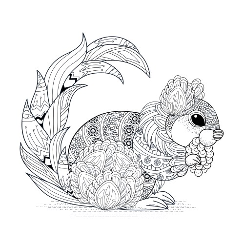 Image Result For Squireel Coloring Page