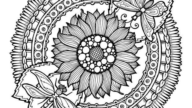 Imagenes mandala para colorear 99 orientaci n and jar - Mandala paysage ...