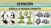 Os hemos preparado estas excelentes actividades para trabajar la atención de nuestros alumnos, en ellas deben de señalar de un conjunto de imágenes de animales, ¿Cuál es la correcta?.  […]