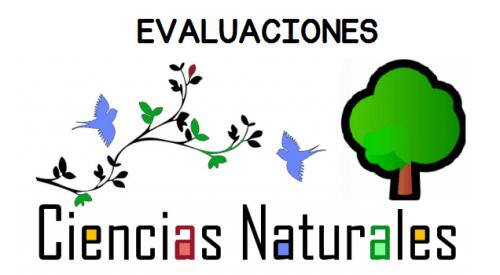 Ciencias Naturales conjunto de evaluaciones finales de 1º a 6º ...