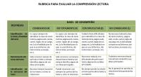 En el contexto de las pruebas PISA se define la competencia lectora como: La capacidad individual para comprender, utilizar y analizar textos escritos con el fin de lograr sus objetivos […]