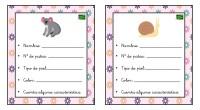 Colección de tarjetas para aprender más sobre diferentes animales. Una forma amena de acercar a nuestros alumnos a conocimiento que les puede resultar complejos.