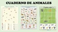 Buenas tardes. He estado trabajando en la creación de otro cuaderno, esta vez con la temática de los animales. El cuaderno cuenta con: – Averigua las coordenadas. – Coloca el […]