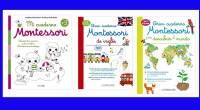 Os recomendamos estos fantásticos cuadernos Montessori que podrá comprar en Amazon y que son los mejores para que los niños aprendan. El niño aprenderá de manera autónoma y a su […]