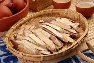 Traditional Chinese Medicine - Astragalus root (Astragalus membranaceus)