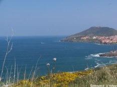 Côte catalane Collioure