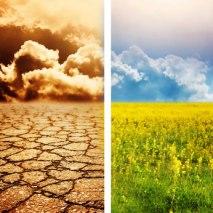 Métiers de l'agro-écologie