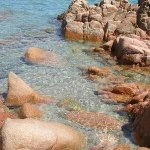 Licence pro Coordonnateur de projet : patrimoine naturel et paysages littoraux