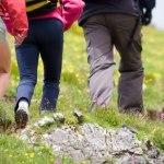 Licence pro Management de projets touristiques durables