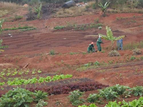 agroécologie Madagascar