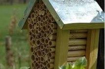 hôtel pour protéger les abeilles