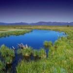 Licence pro Mesure de la qualité des milieux : eau, air, sol