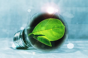 MS Marketing de l'énergie