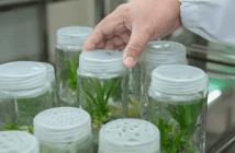 laboratoires de recherches en environnement