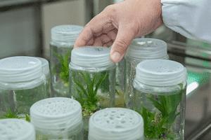 laboratoires de recherche en environnement