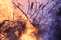 formation risques environnementaux