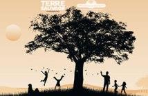 concours arbre remarquable