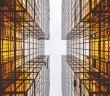MS construction et habitat durables