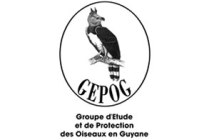 association GEPOG Guyane française
