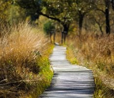 visites virtuelles espaces naturels