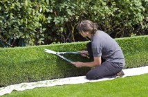 emploi jardinier botaniste Mayenne