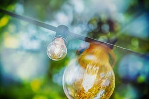 licence tpe énergie environnement