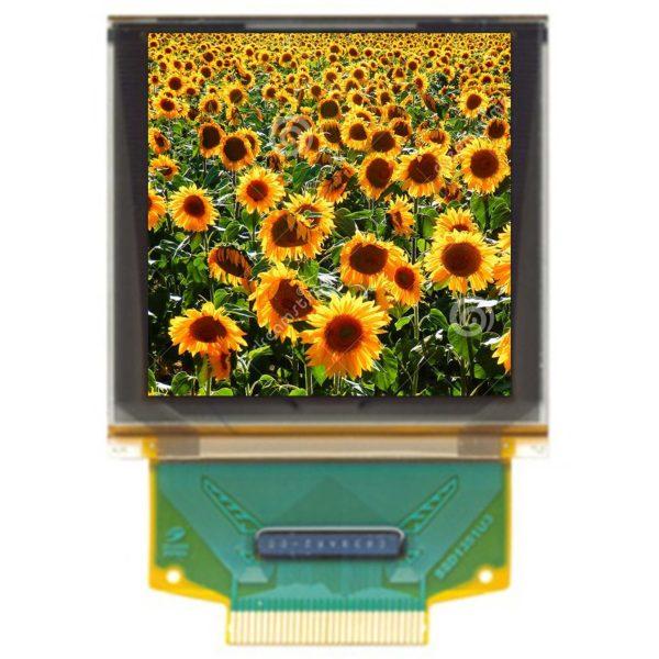 1.50'' OLED, 128x128, colore, interfaccia parallela/SPI