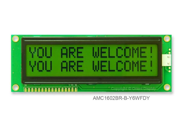 AMC1602BR-B-Y6WFDY (16x2 Character LCD Module)
